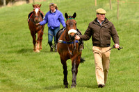 Fernie Point to POint 2016 010