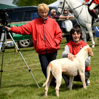The Fernie Point to Point 2017 Padock & winners 034