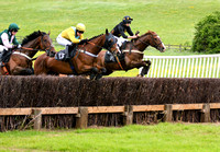 Fitzwilliam Hunt Point to Point 2017 037