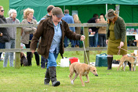 The Woodland & Pytchley Lurcher and Terrier Show 2017 014