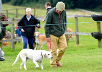 The Woodland & Pytchley Lurcher and Terrier Show 2017 021
