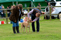 The Woodland & Pytchley Lurcher and Terrier Show 2017 015