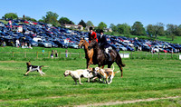 Fernie point to point at Dingley 2018 114