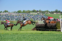 Fernie point to point at Dingley 2018 137