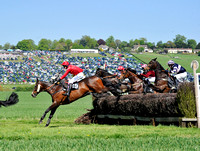 Fernie point to point at Dingley 2018 139