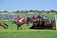 Fernie point to point at Dingley 2018 140