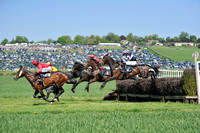 Fernie point to point at Dingley 2018 141